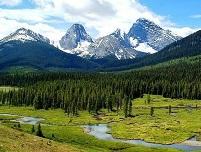 erdő, háttérben hegyekkel